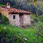 Casa Vacanze La Baghera - La Baghera - Casetta
