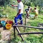 Casa Vacanze La Baghera - La Baghera - Orto