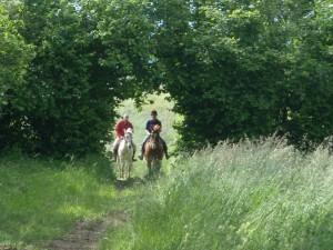 Casa Vacanze La Baghera – Passeggiate a Cavallo